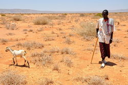 800px-Oxfam_East_Africa_-_SomalilandDrought011